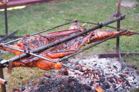 animal body part: Barbecuing Entire Lamb on steal frame. Stock Photo