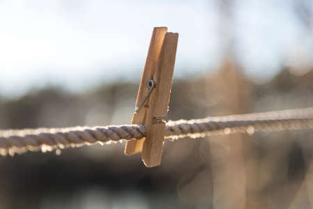 clothes pin: Wooden Clothes Pin on Clothes Line