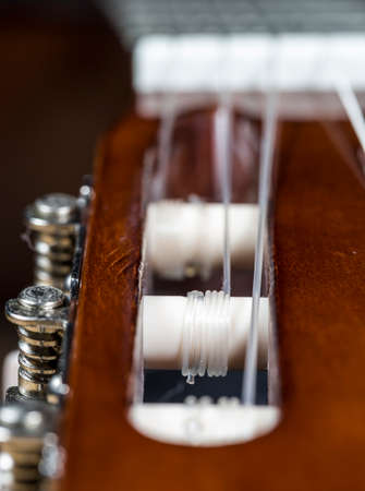 pegheads: Guitar Strings Close Up with machine heads