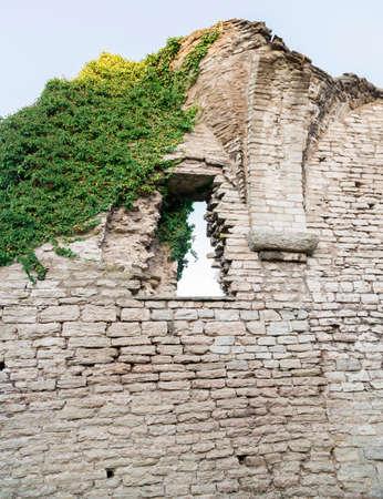 ruin: Window in Ruin