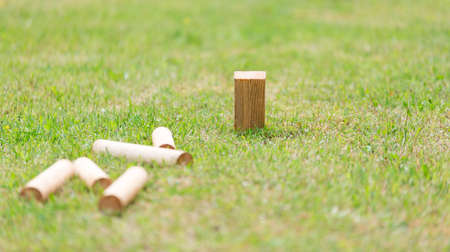 grass close up: Swedish Lawn Game Kubb on grass close up.