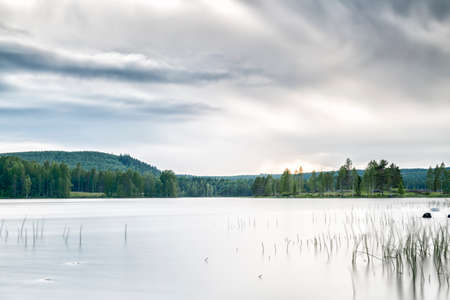 Lake with Forest and a cloudy sky.