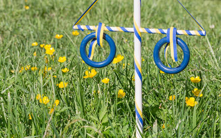 midsummer pole: Ornament Maypole in Grass with buttercup flowers.