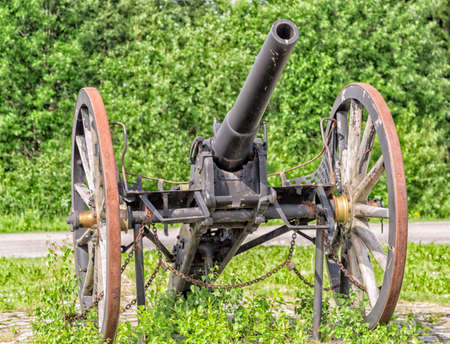 Old Cannon Weapon with green background.