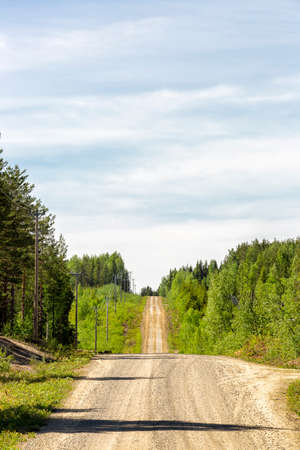 Gravel Road in Sweden with Forest. Banco de Imagens