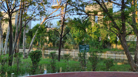The park looks shady and beautiful with ponds and ornamental plants.