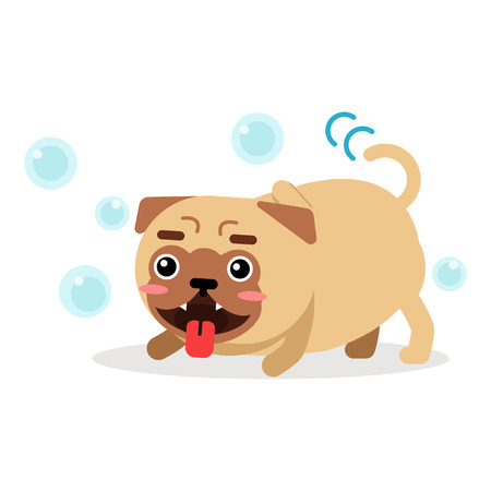 Funny pug dog character playing with soap bubbles vector Illustration