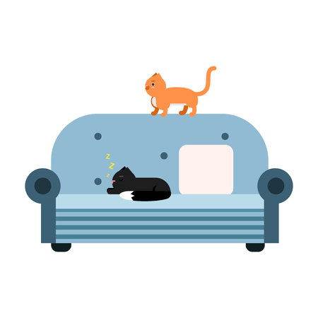 condominium: Cute black and red cats sitting on a light blue sofa, home pet resting cartoon vector Illustration
