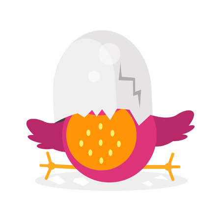 Cute newborn bird character, funny chick in egg shell cartoon vector Illustration on a white background