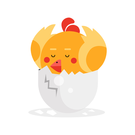 broken eggs: Cute newborn yellow bird character, funny nestling in egg cartoon vector Illustration on a white background