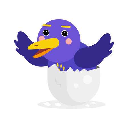 Cute newborn blue bird character, funny chick in egg cartoon vector Illustration