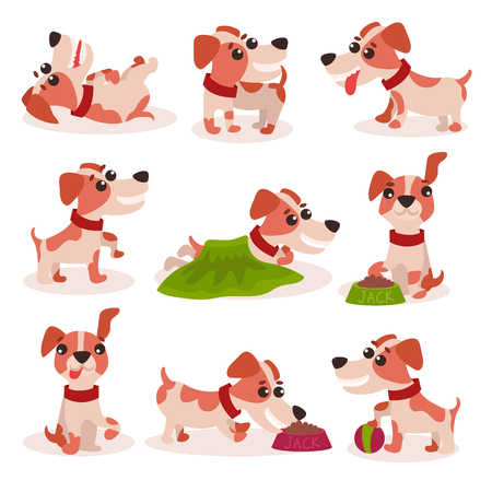 Funny jack Russell terrier characters set on white background.