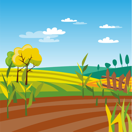 Cultivated agriculture field, rural landscape vector Illustration