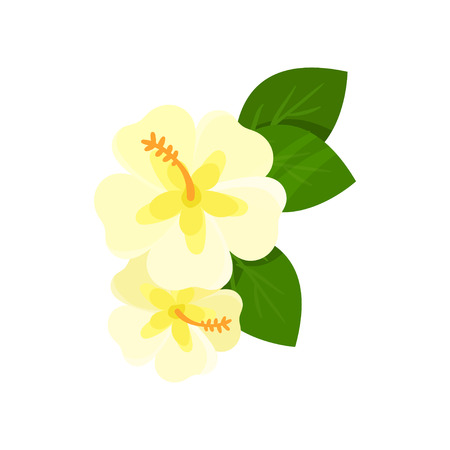 Frangipani tropical flower cartoon vector Illustration Illustration