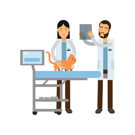 Two veterinary doctors examining red cat in vet clinic colorful cartoon vector Illustration Illustration