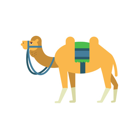 Arabian bactrian camel with colorful saddle between two humps. Cartoon character of desert animal in flat style. Symbol of Islamic culture. Vector illustration isolated on white background.