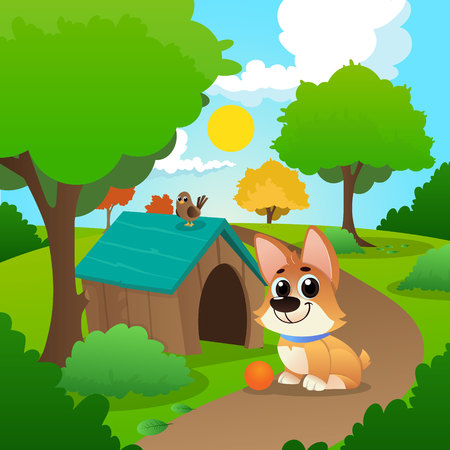Smiling corgi sitting on path in park. Little bird on roof of dog s house. Playful pet with orange ball. Nature landscape with garden trees and green grass. Sunny day. Colorful vector in flat style.