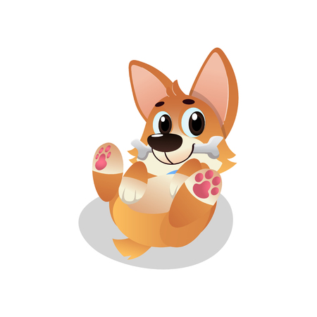 Funny corgi lies on his back with bone in mouth. Cartoon pet character. Playful domestic animal. Graphic design for sticker, kids print or greeting card. Flat vector illustration isolated on white.