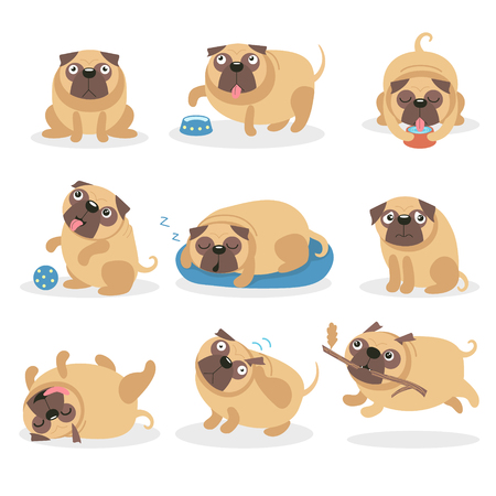 Cute funny pug dog set, dog in different poses and situations cartoon vector Illustrations on a white background