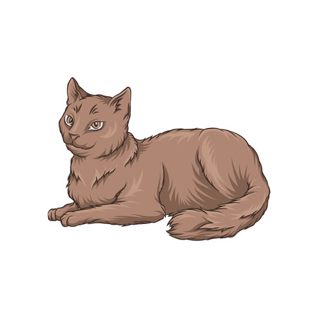 Cute brown cat pet animal lying on the floor hand drawn vector Illustration on a white background