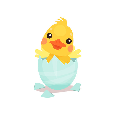 Cute little yellow duck chick character hatching from the egg cartoon vector Illustration on a white background