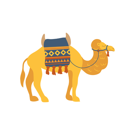 Camel with saddle and cover on the back, two humped desert animal in cartoon  illustration on a white background.