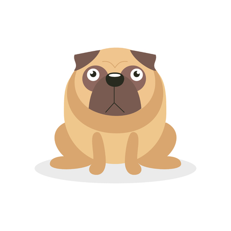 Cute angry pug dog character, pet dog cartoon vector Illustration on a white background Illustration