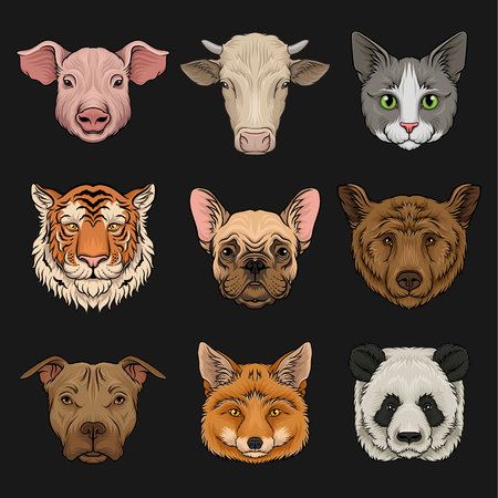 Wild and domestic animals set, heads of pig, cow, bulldog, cat, bear, pug, tiger, fox hand drawn vector Illustrations