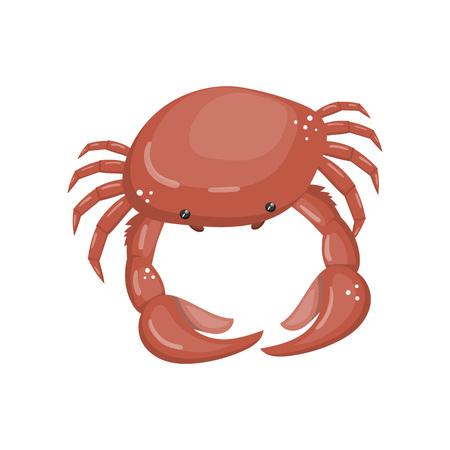 Crab, fresh seafood, shellfish cartoon vector Illustration.