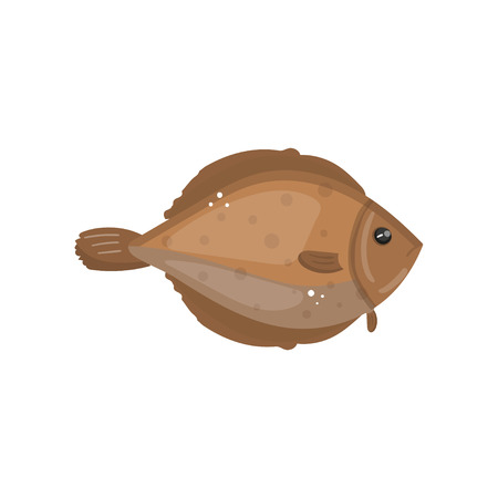 Flounder fish animal, fresh seafood cartoon vector Illustration.