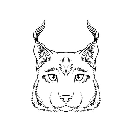 Sketch of lynx head, portrait of wild serval cat animal black and white hand drawn vector Illustration on a white background