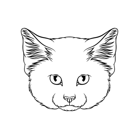 Sketch of lynx head, portrait of wild cat animal black and white hand drawn vector Illustration on a white background Illustration