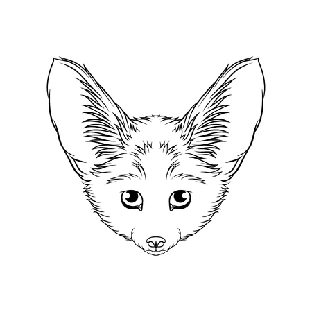 Sketch of desert fennec fox head, portrait of forest animal black and white hand drawn vector Illustration on a white background Vector Illustration