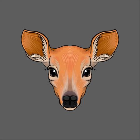 Hoofd van reeën, portret van wilde dieren hand getekende vector illustratie op een grijze achtergrond