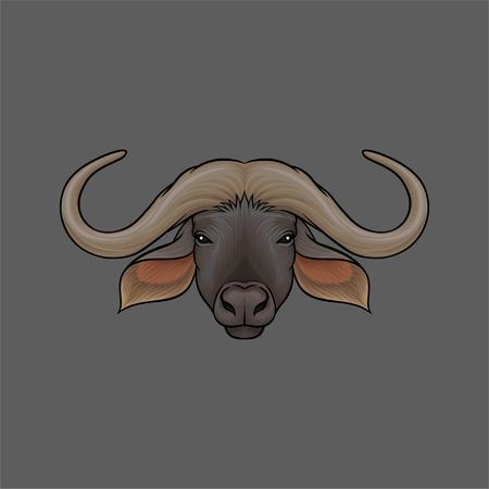 Head of muskox, portrait of wild animal hand drawn vector Illustration on a grey background Illustration