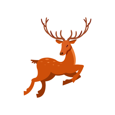 Brown spotted deer with antlers running, wild animal cartoon vector Illustration on a white background