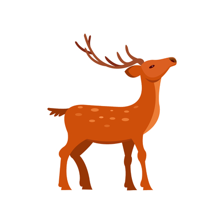 Graceful brown spotted deer with antlers, wild animal cartoon vector Illustration Illustration