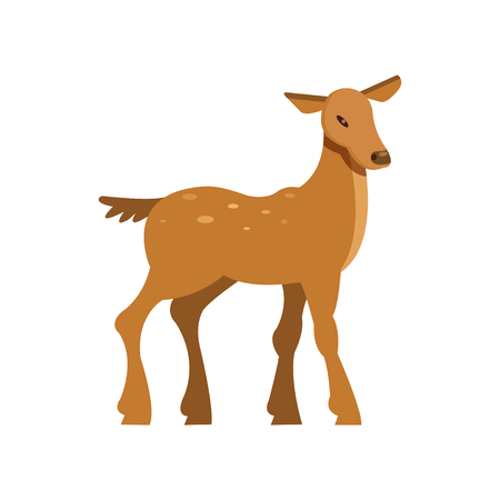 Graceful spotted fallow roe deer, wild animal cartoon vector Illustration on a white background