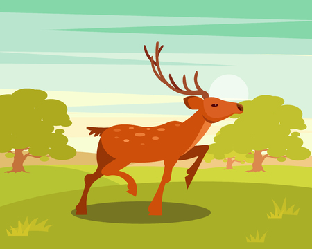 Spotted deer with antlers, wild animal amongst a backdrop of green meadow and forest vector Illustration Stock Vector - 94050392