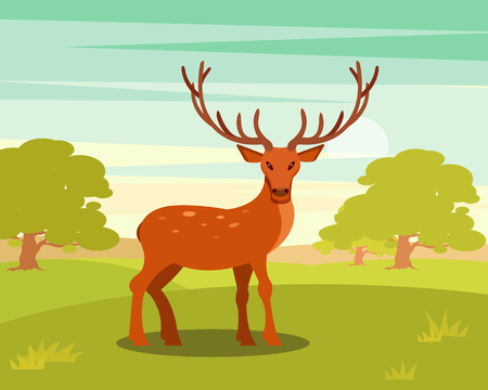 Brown spotted deer with antlers standing, wild animal amongst a backdrop of green meadow and forest vector Illustration Illustration