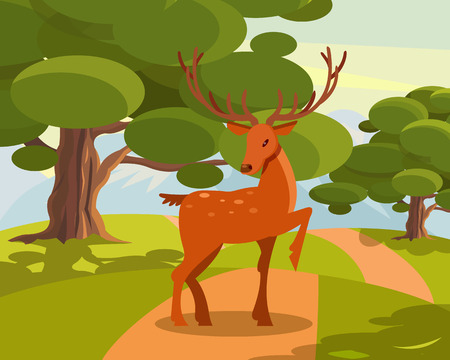 Spotted deer with branched horns, wild animal amongst a backdrop of green meadow and forest vector Illustration Illustration