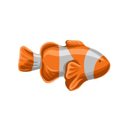 Clown fish, orange and white striped fish vector illustration.