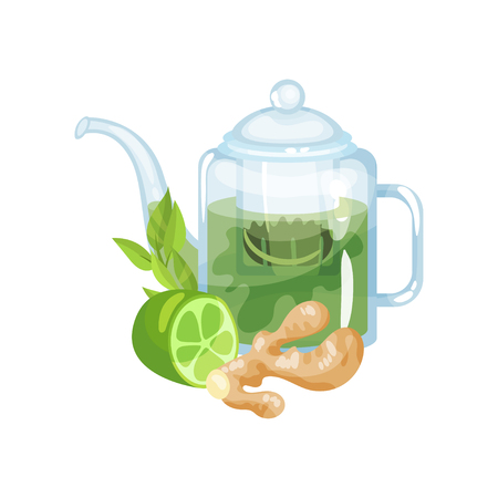 Natural green herbal tea in a glass transparent teapot with fresh lime and ginger vector Illustration on a white background Illustration
