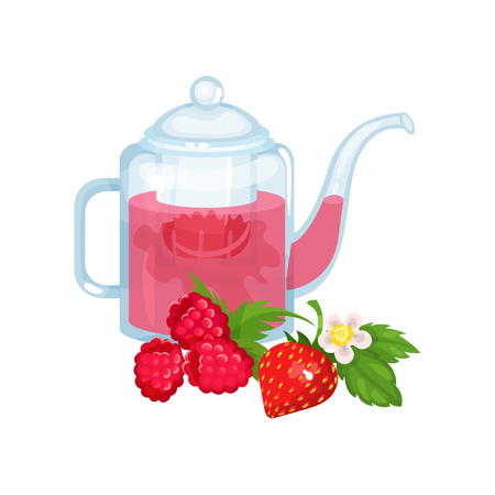 Natural green herbal tea in a glass transparent teapot with fresh ripe raspberry and strawberry vector Illustration Illustration