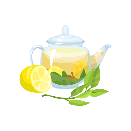 Natural green herbal tea in a glass transparent teapot with fresh lemon vector Illustration