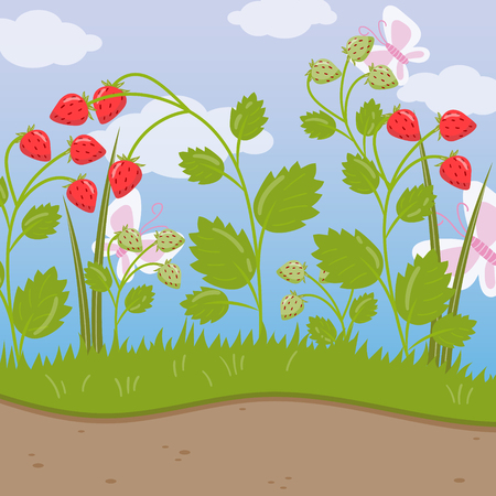 Strawberry field, green background with ripe berries colorful vector illustration in cartoon style. Illustration