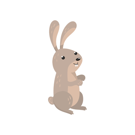 Cute hare woodland cartoon animal vector Illustration Illustration