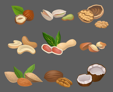 Icons set with various kinds of nuts Vectores