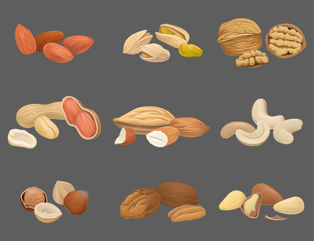 Icons set with various kinds of nuts Иллюстрация