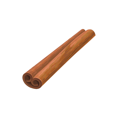 Detailed illustration rolled cinnamon stick. Aromatic spice for dishes. Cuisine theme. Cooking and aromatherapy ingredient. Decorative vector element